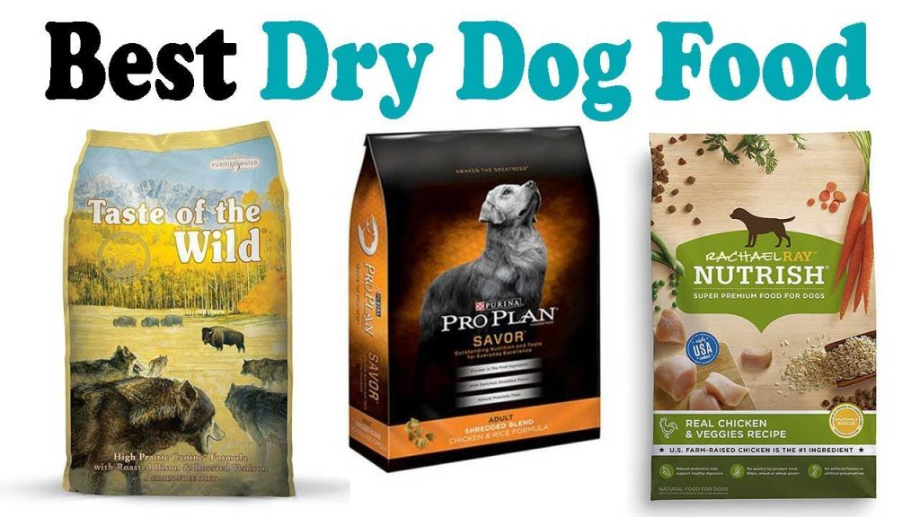 best dry dog food