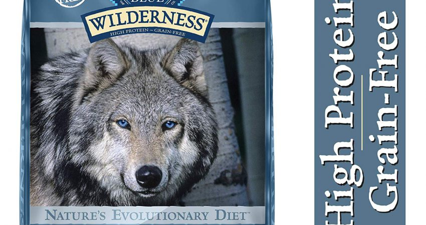 Blue Buffalo Wilderness High Protein Dog Food Reviews