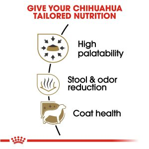 Royal Canin Breed Health Nutrition Chihuahua