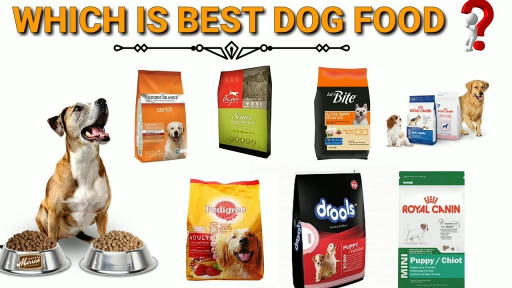 best-dog-food