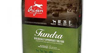 The Orijen Tundra Dog Food Review
