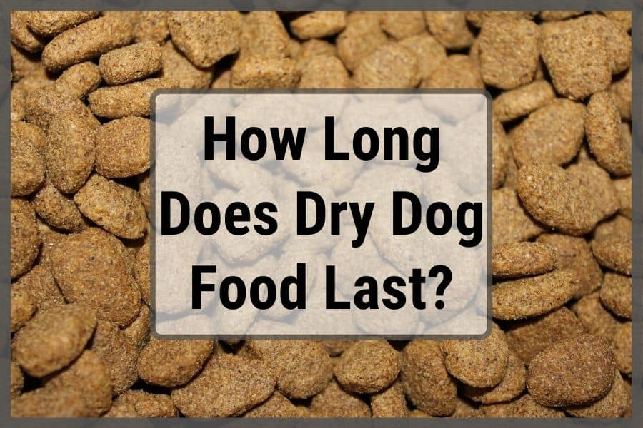 How Long Does Dry Dog Food Last