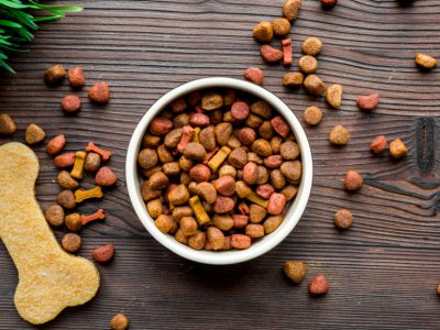 Why Grain Free Dog Food