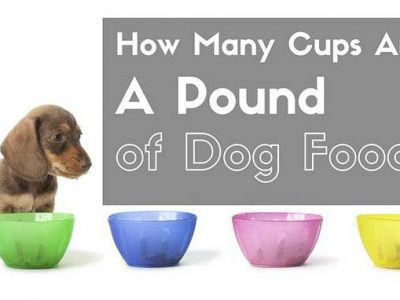 How Many Cups Of Dry Dog Food Are In A Pound?