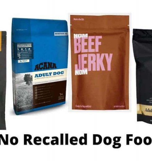 Which Dog Food Has Never Been Recalled?