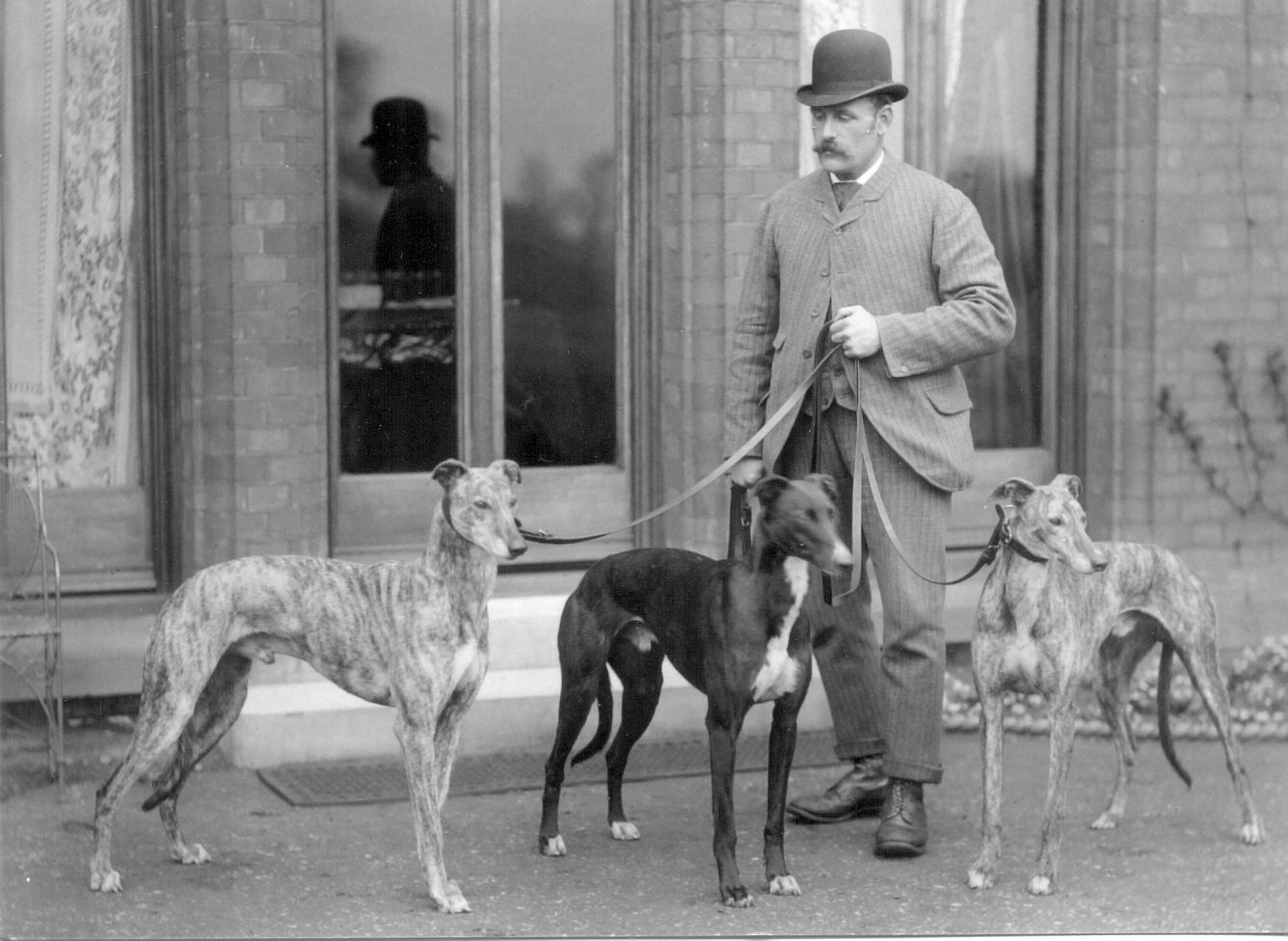 History of Greyhound