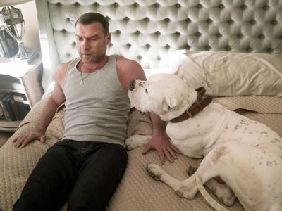 What Kind Of Dog Is On Ray Donovan?